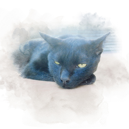 Cute black cat hypocrisy face with yellow eyes sit on floor. Watercolor painting (retouch).