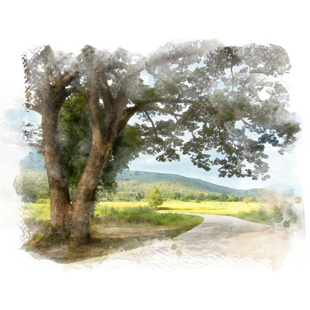 Country road and big rain tree with rice field and mountain background. Watercolor painting (retouch). Stock Photo