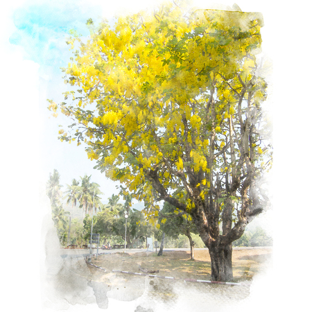 Golden shower flower (Cassia fistula) tree with blue sky background. Watercolor painting (retouch).