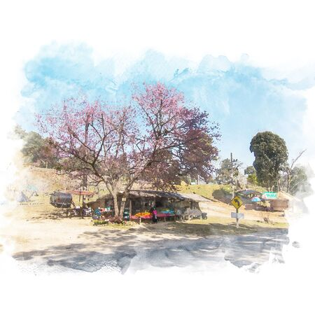 Local shop under the tree are blooming on roadside with blue sky. Watercolor painting (retouch).