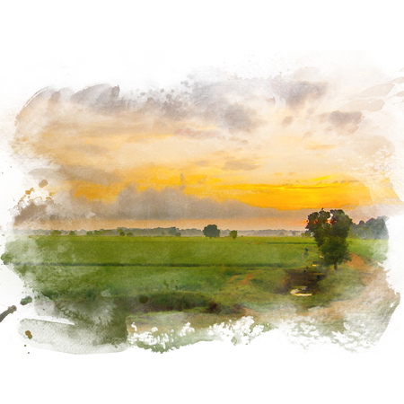 Rice field with beautiful sky on background. Watercolor painting (retouch). Stock Photo