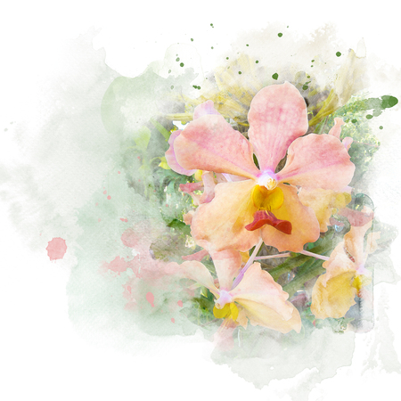 Illustration of blossom orchid. Artistic floral abstract background. Watercolor painting (retouch).