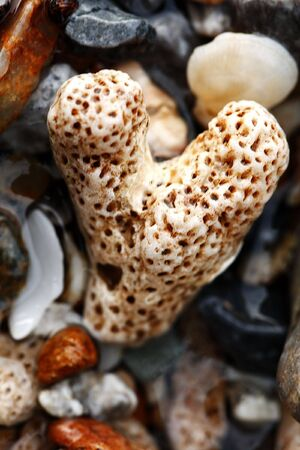 Heart Rock Closeup in the Beach.
