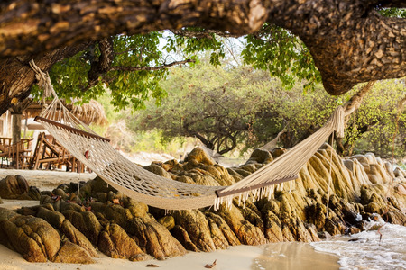 Hammock under the tree and sea side.