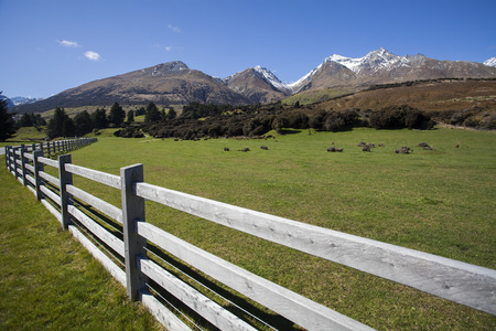 luge: Mountain and farm on scenic road form Queenstown to Glenorchy, New Zealand Stock Photo