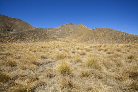 aotearoa: Lindis Pass, rolling grassy hills around Lindis Pass, Otago, New Zealand