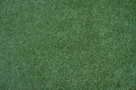 Grass green color  photo