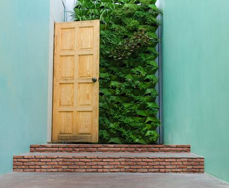 Beautiful Hidden Painted Peeling Door to Home. photo