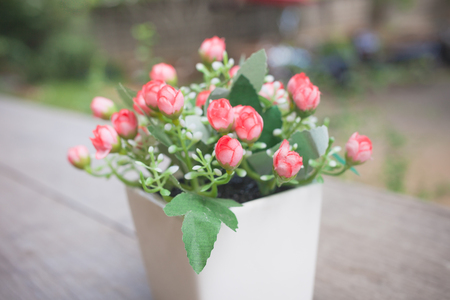 pot light: Summertime, Beautiful pink flowers in pot on nature background Stock Photo