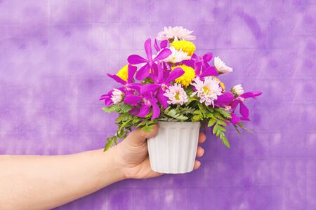 Hand holding bouquet of chrysanthemum and orchid flowers isolated on violet background.