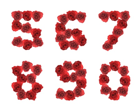8 9: high resolution alphabet letter 5 6 7 8 9 0 made from red rose isolated on a white background