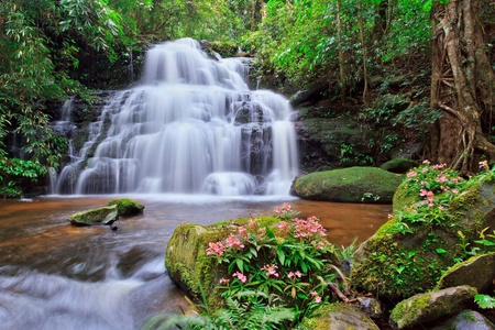 torrent: beautiful Mundaeng Waterfall in Thailand