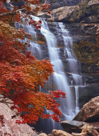 waterfall in forest, autumn landscape at Phukadueng National Park, Loei, Thailand