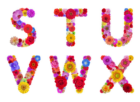 Flower alphabet Isolated on white background with clipping part photo