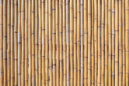 material: bamboo wall