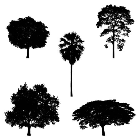 tree silhouettes: illustration of tree in silhouette