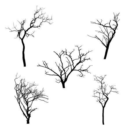 with sets of elements: illustration of dead tree in silhouette