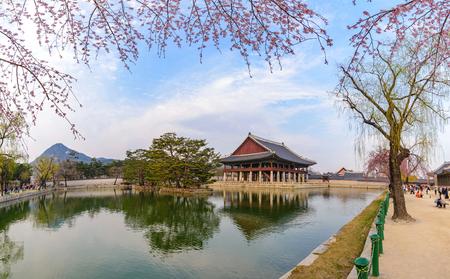 fleur de cerisier: Gyeongbokgung Palais avec fleur de cerisier, Séoul, Corée du Sud Éditoriale
