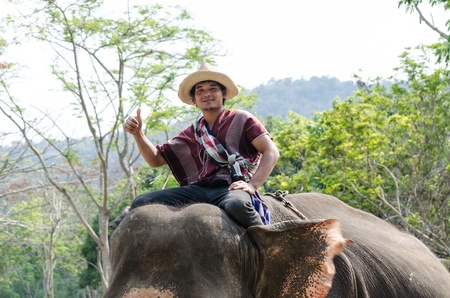 mahout: Chiang Mai, THAILAND - April. 13: thailand Mahout  riding on his elephant backs  , April 13, 2012 in Chiang Mai, Thailand Editorial