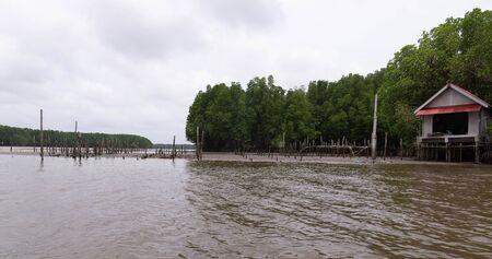 Oysters farm near mangrove forest,Thailand
