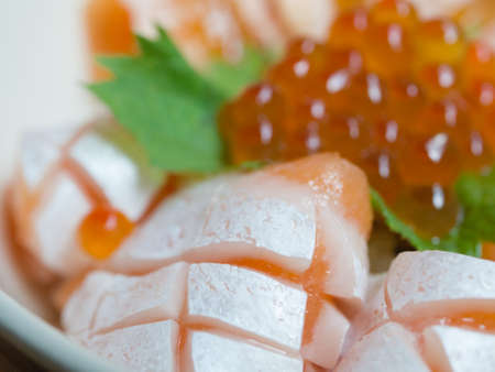 salmon fishery: Closed up of Japanese Dish Salmon Ikura Don made from fresh salmon and salmon roe served with Japanese rice, Selective Focus, Texture  Pattern