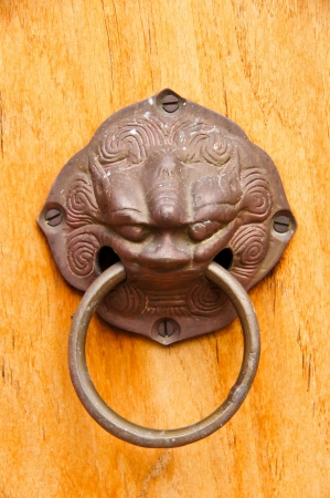 Copper figure of Chinese lion On the ancient temple in wood door , Southern Thailand  photo