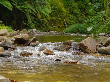 small waterfall Stock Photo - 16328042