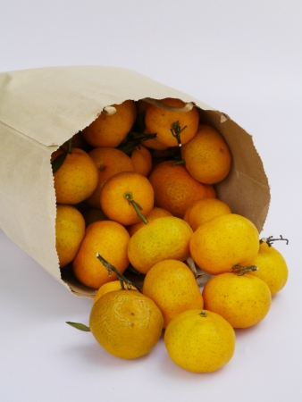 Mandarins orange in a paper bag isolated on white background. photo