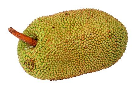 jack fruit isolated on white.