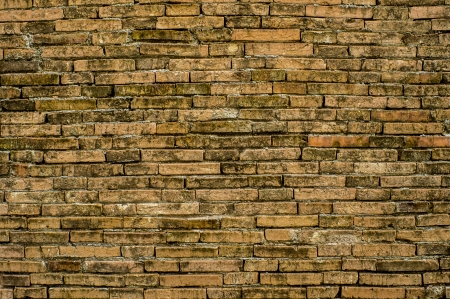 old brick wall background texture photo