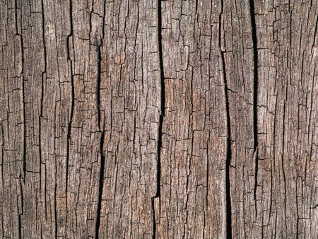 old wooden surface. photo