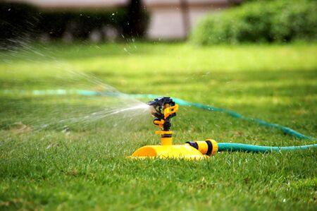 water hose: Water hose.