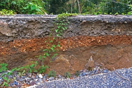 stratigraphy: Stratigraphy of road damage caused by the earthquake.