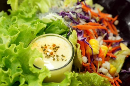 Mixed vegetable salad and Masala cream. photo
