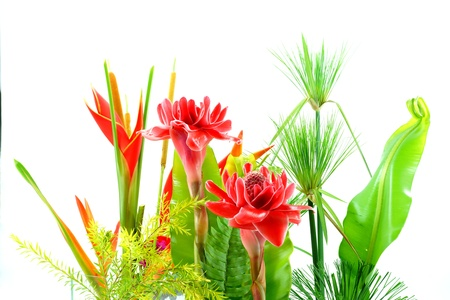 heliconiaceae: Flower arrangement with tropical flowers.