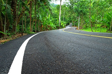 rains: Winding Road in Thailand