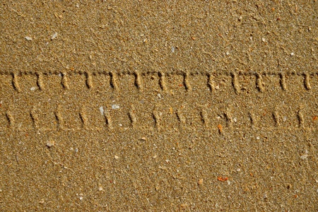 Tire tracks on the beach. Stock Photo - 20928936