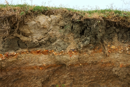 cut of soil with different layers at the Freshwater lake., Thailand. photo