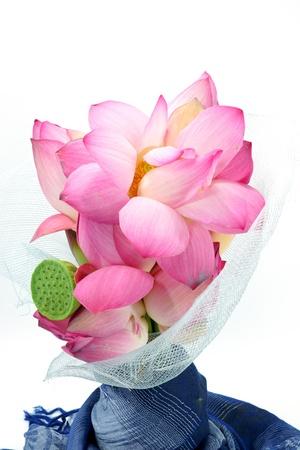 nelumbo nucifera: Flower arrangements with lotus on isolate white background. Stock Photo
