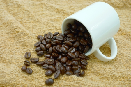 arabica: Arabica coffee beans. Stock Photo