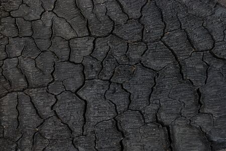 Surface of charcoal.
