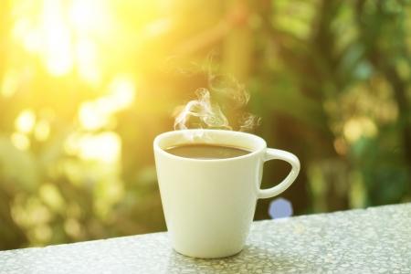 coffee coffee plant: morning coffee