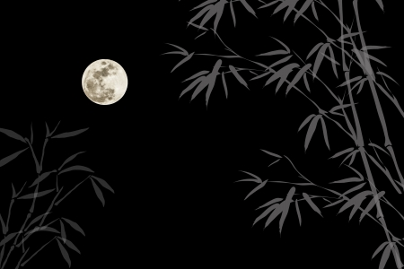 Full moon background photo