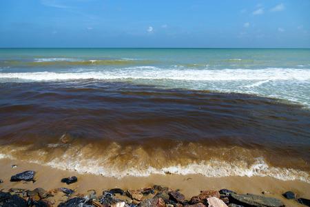 excremental: Black sea wastewater. destruction of nature Stock Photo