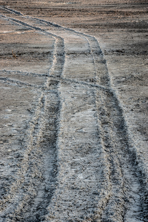 Tire tracks on the mud road? Stock Photo - 26693185