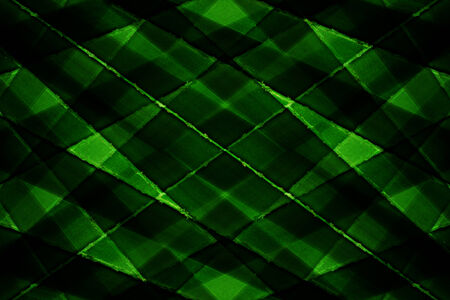 Texture of Green palm Leaf photo