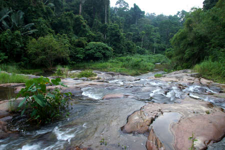 Waterfall in tropical forest at Kra Chong national park, Trang province, Thailand. photo