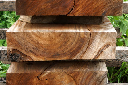 primary product: Wood for industrial Stock Photo