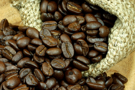 roasted coffee beans photo