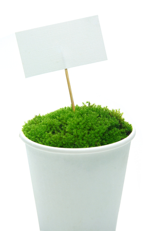 Paper tag and Green moss in the paper grass on a white background. photo